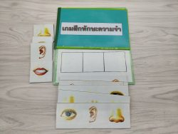 เกมการศึกษาปฐมวัย - เกมฝึกทักษะความจำ 2 ชุด (T01-04)-3