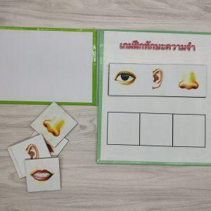 เกมการศึกษาปฐมวัย - เกมฝึกทักษะความจำ 2 ชุด (T01-04)