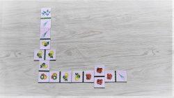 สื่อการเรียนการสอน -T06-05 เกมภาพต่อปลาย (โดมิโน ) ผัก (25 ชิ้น)