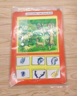 สื่อการเรียนการสอน -T05-08 เกมสังเกตรายละเอียดภาพสัตว์ (อวัยวะที่หายไป)