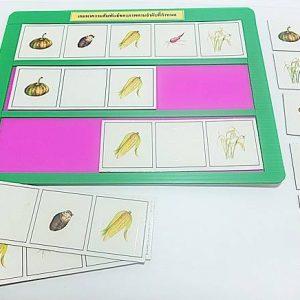T04-06 เกมหาความสัมพันธ์ของภาพตามลำดับที่กำหนด