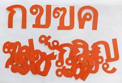 T19-15 ตัวอักษร ก-ฮ (สำหรับทำสื่อร้อยเชือก)
